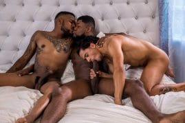 Armond Rizzo big black cock gay porn